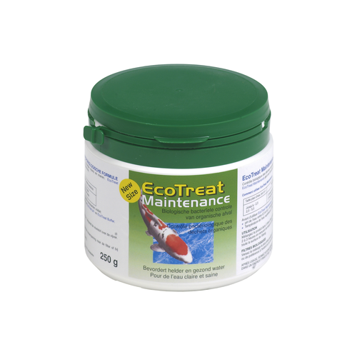 MAINTENANCE   250 G ECOTREAT