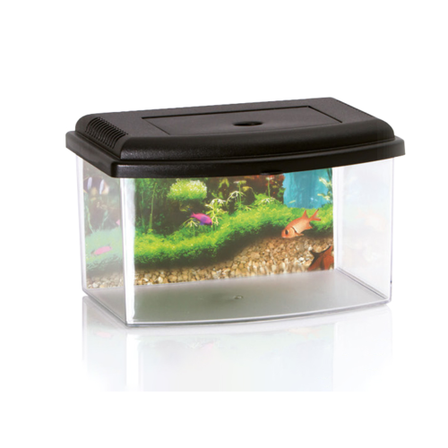 AQUABOX  5.5 L WITH POSTER/COVER